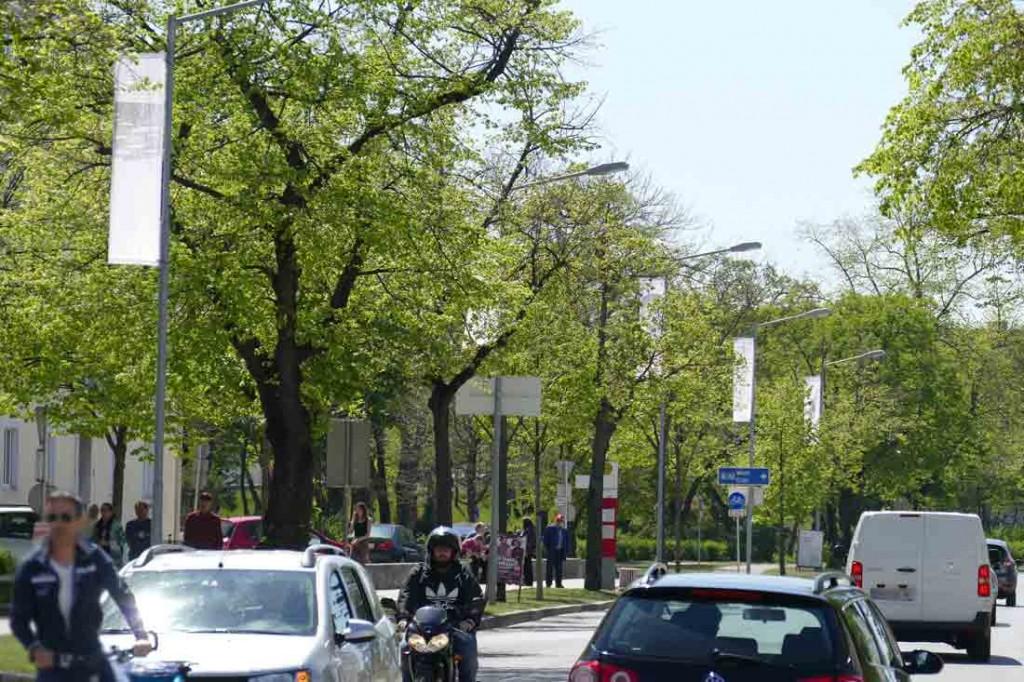 Flaggenparade-2a